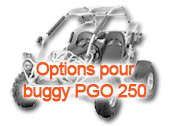 Options pour buggy PGO 250